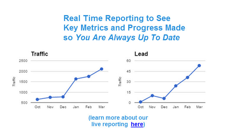 with our search engine optimization services we provide real time reporting